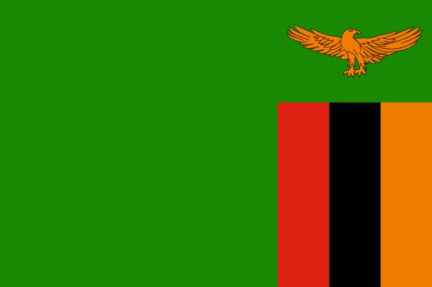 Patch Zâmbia - Brasfoot 2016